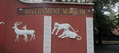 Going into the Chennai Government Museum