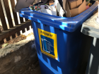 The bin for paper and paper products