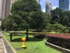 A park in the city (KL)