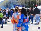 A photo I was able to take at the most recent cherry blossom festival I could attend
