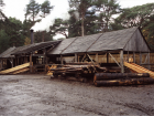 The steam-powered sawmill I worked at during the summers